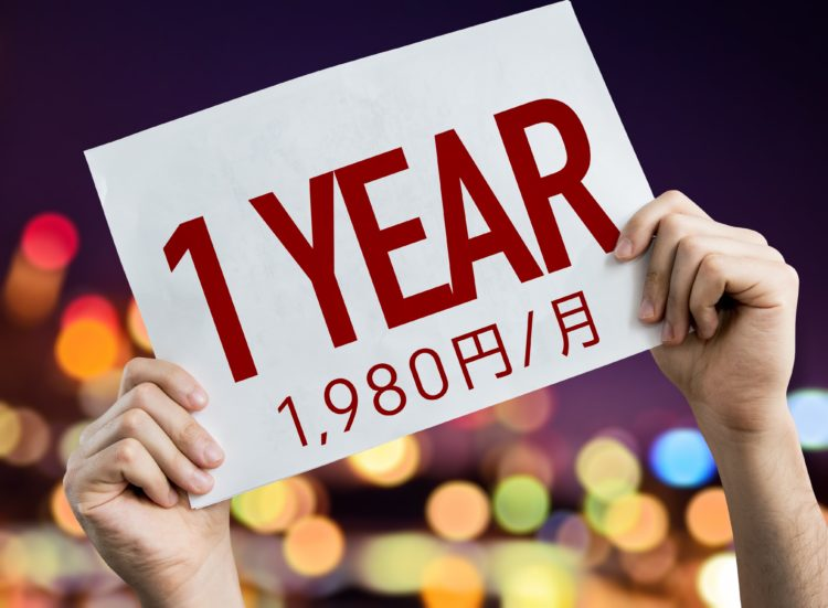 一年間1,980円