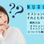 あなたにとって必要?NURO光のオプションはどんなものがあるの?
